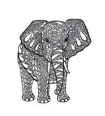 elephant drawings