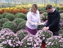 pbr ornamental crops