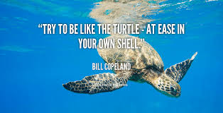The Quot Be Like Bill - try to be like the turtle at ease in your own shell bill copeland