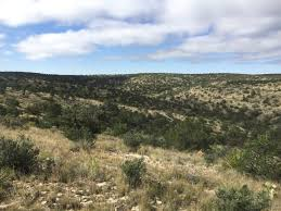 programs natural resources native plant communities new mexico here u0027s how my 2017 self guided new mexico mule deer hunt went