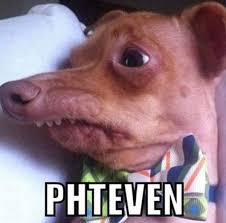 Stephen Meme - phteven tuna the dog know your meme