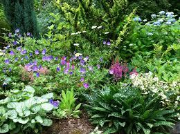 Shade Garden Ideas Impressive Decoration Perennial Flower Garden Design Plans Shade