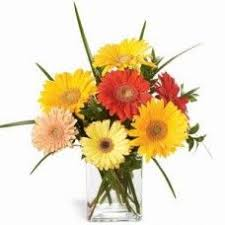 send birthday gifts best 25 send birthday gifts ideas on crafty birthday