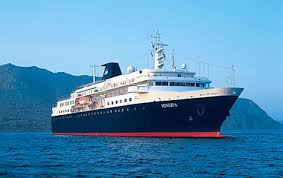 time the cygnets began swanning cruise ships cruises and