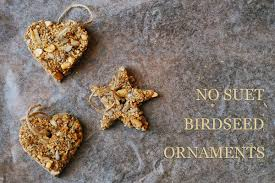 no suet birdseed ornaments sas does no suet birdseed ornaments