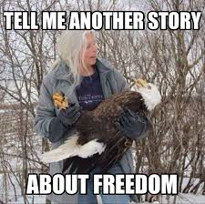Funny 4th Of July Memes - 20 funny 4th of july memes for this special holiday sayingimages com