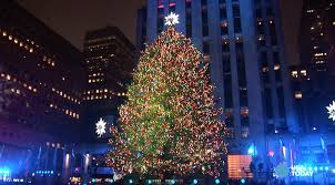 manhattan tree lighting rainforest islands ferry