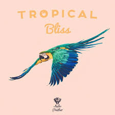 tropical photo album 8 best tropical house images on tropical houses