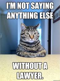 Lawyer Cat Meme - i m not saying anything else without a lawyer chris hansen cat