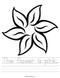 the flower is pink worksheet twisty noodle