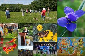 kansas native plant society upcoming events u2013 kansas city native plant initiative