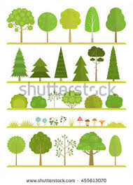 set of flat forest and park elements different types of trees