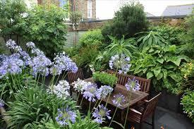 Rock Garden Perennials by Homes And Gardens Perennials That Thrive In Full Sun Perennials