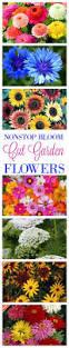 continuous blooms for a cut flower garden cut flower garden cut