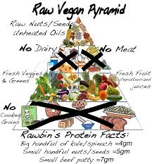 going raw raw food diet meal ideas and food pyramid