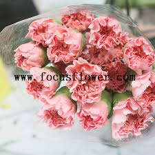 Wholesale Fresh Flowers Bulk Fresh Flower Marigold Natural Flowers Wholesale Name Of