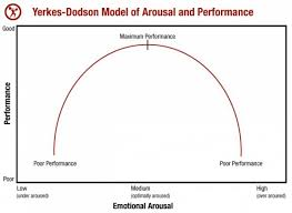 Part Of Brain That Controls Arousal Maximize Performance Through Controlling Your Arousal Level