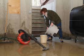 How Do You Get Rid Of Mold In A Basement by First Steps After A Basement Flood