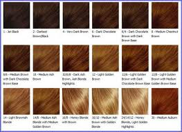 hair color light to dark posts related light caramel brown hair color chart medium hair