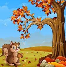 imagenes animadas de otoño ardilla de dibujos animados en el bosque de otoño fotos retratos