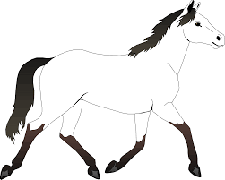3d horse coloring pages