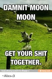 Get Your Shit Together Meme - damnit moon moon get your shit together handcrafted by broski29 for