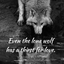 Lone Wolf Meme - even the lone wolf has a thirst for love imgur