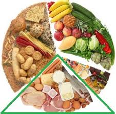 cuisine definition definition protein