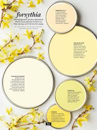 soft and pretty paint colors searching