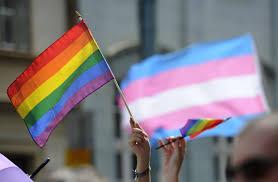 Flag People Pride Month Started With Transgender People And Transgender