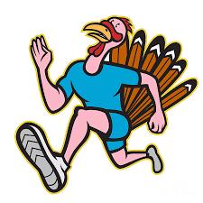 turkey run runner side cartoon isolated digital art by aloysius
