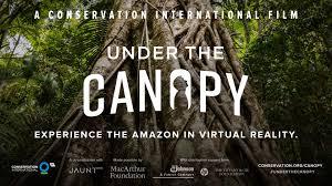 canopy amazon under the canopy jaunt