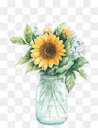 Vase Of Sunflowers Sunflower Png Images 5463 Graphic Resources For Free Download