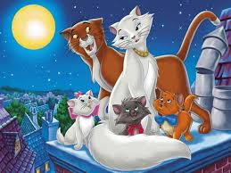 aristo cats wallpapers quality download free