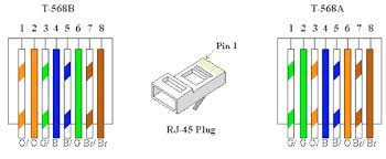 cat wiring diagram appearance cat ethernet wall with
