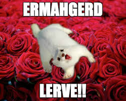 Happy Valentines Day Memes - ermhgerd lerve a stoatally awesome valentine s day meme happy