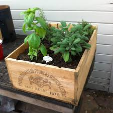 Herb Garden Planter Ideas by Box Garden Ideas Christmas Lights Decoration
