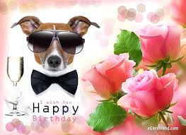 birthday ecards free free birthday ecards free birthday cards all