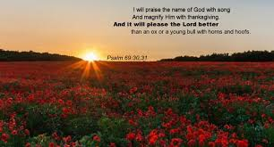 psalm 69 30 31 magnify him with thanksgiving