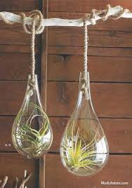 Roost Vases Roost Recycled Glass Bubble Hanging Terrariums U2013 Modish Store