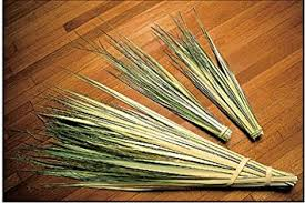 palms for palm sunday fresh easter palms for palm sunday 100 palms per bag