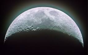 china plans to grow flowers and silkworms on the side of the moon