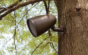 paradigm outdoor speaker sale century stereo