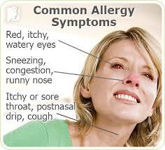 allergies symptom information 34 menopause symptoms com