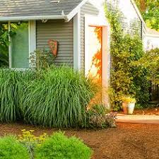 Backyard Ideas For Dogs Creating A Dog Friendly Water Efficient Yard Yards Dogs And Paths