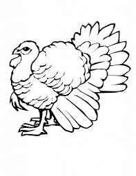 a drawing of a turkey turkey drawing pictures clipartsco drawing