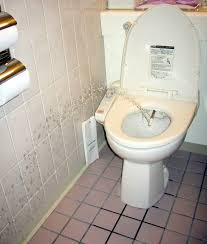 Japanese Bathrooms Design by Japanese Bathrooms Acehighwine Com