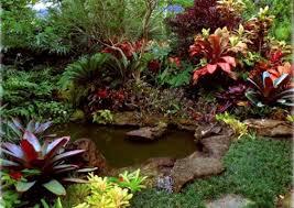 tropical garden design ideas the best garden design landscape