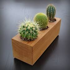 Indoor Modern Planters Things You Can Do With A 4x4 Wood Cactus Planter In Recycled