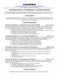 executive resume pdf marketing executive resume sle doc digital manager exles pdf